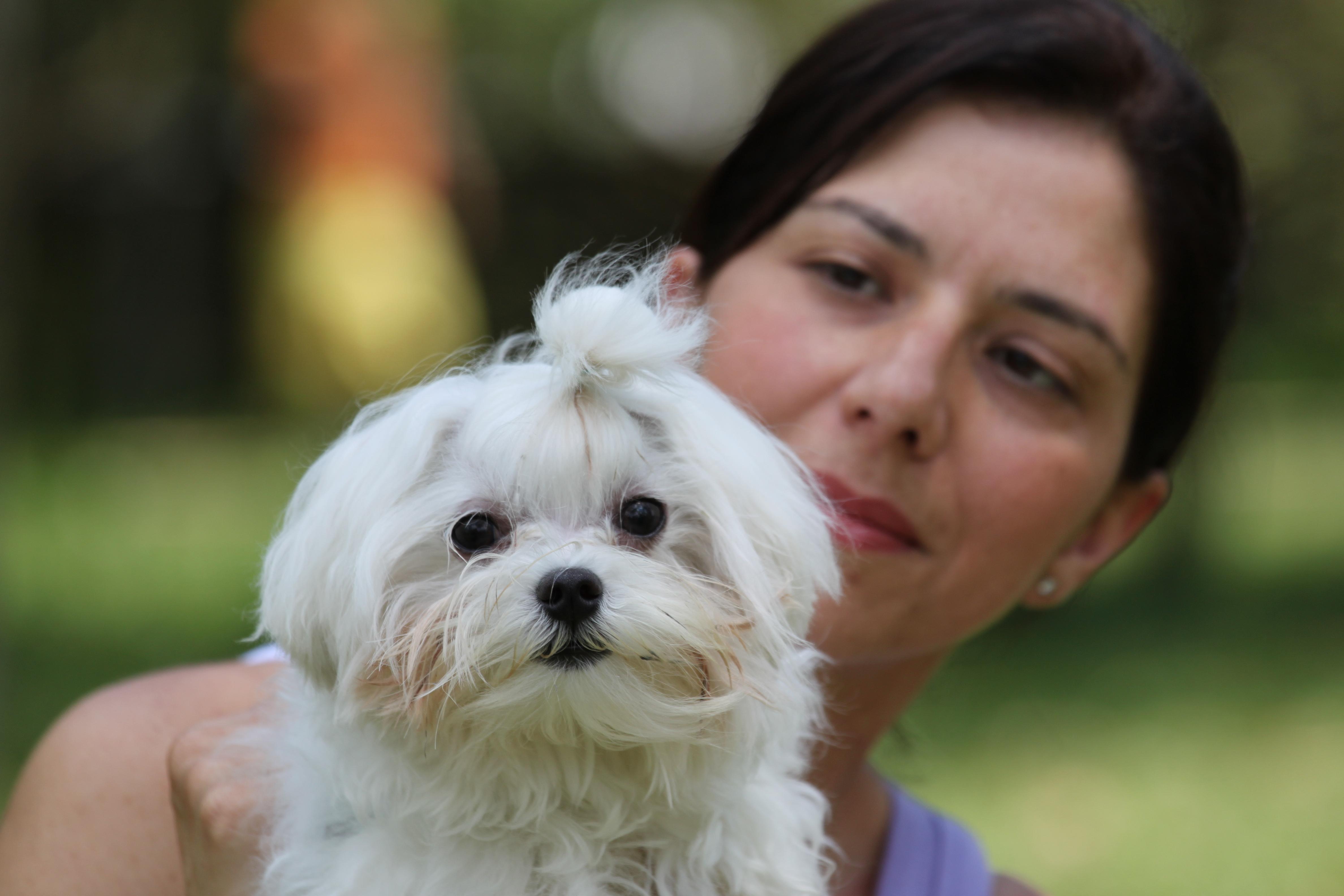 Dra. Cris Viviani e a arte de entender os animais