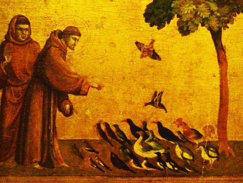 Francisco e a Paz do Natal – por Zilma Bandel.