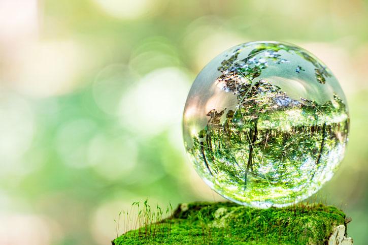 A ideia de transição ecológica no Brasil hoje – notas para discussão