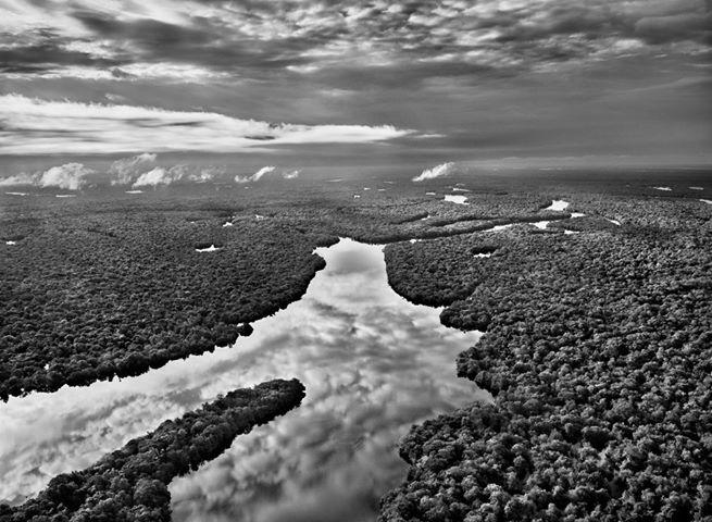 Sobre o Patrimônio Natural e a atual gestão do meio ambiente